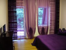 Accommodation Domoșu, Orhideea Guesthouse