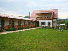 Accommodation Bălnaca-Groși, Poezii Alese Guesthouse
