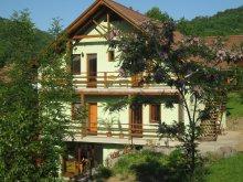 Szállás Vármező (Câmpu Cetății), Ambrus Árpád Vendégház