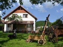 Bed & breakfast Ocna de Jos, Damarisz Guesthouse