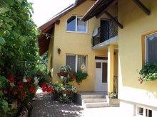 Accommodation Straja (Căpușu Mare), Balint Gazda Guesthouse