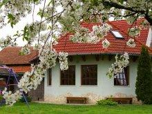Accommodation Abádszalók, Gábor Apartments