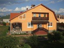 Vendégház Gyergyószárhegy (Lăzarea), Timi Vendégház