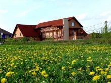 Accommodation Sighisoara (Sighișoara), Balla B&B