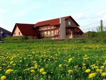 Bed & breakfast Odorheiu Secuiesc, Balla B&B