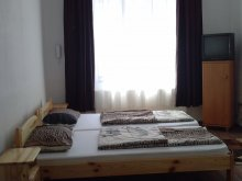 Accommodation Uileacu de Criș, Daniel Guesthouse