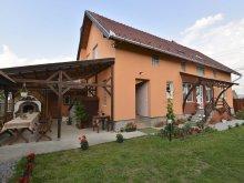 Casă de oaspeți Câmpulung Moldovenesc, Casa de Oaspeți Elekes