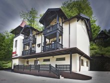 Villa Kékesújfalu (Corvinești), Rigó Villa
