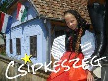 Szállás Lunca Borlesei, Csipkeszegi Vendégház