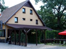 Accommodation Felmer, Stejarul B&B