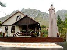 Accommodation Valea Giogești, Vajda Adriana Guesthouse