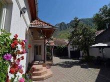 Guesthouse Pătrușești, Piroska House