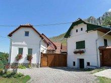 Accommodation Bădeni, Piroska House