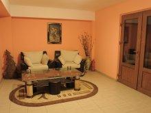 Accommodation Cetățuia (Cioroiași), Grim Hotel