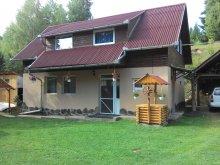 Accommodation Toplița, Balázsi Chalet