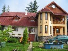 Casă de vacanță Berzunți, Casa Aura