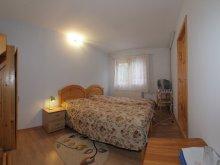 Accommodation Zăpodia (Traian), Tara Guesthouse
