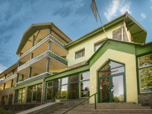 Hotel Budacu de Sus, Teleki Hotel