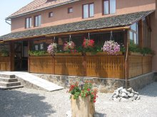 Accommodation Sibiciu de Sus, Botimi Guesthouse