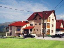 Accommodation Voineșița, Paradis Guesthouse