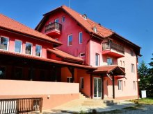Accommodation Sebeș, Marina and Mir Guesthouse