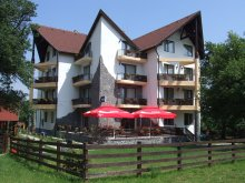 Accommodation Ungureni (Valea Iașului), Alisa Vila
