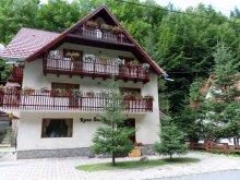 Accommodation Câmpulung, Raza Soarelui Guesthouse