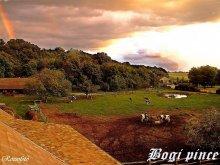 Vendégház Balatonvilágos, Bogi-Pince Vendégház