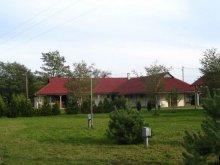 Kulcsosház Vaspör-Velence, Fenyves-tábor