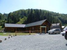 Accommodation Peste Valea Bistrii, Mama Uța Guesthouse