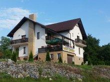 Accommodation Alecuș, Poienița Apusenilor Guesthouse