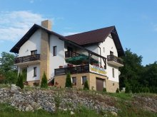 Accommodation Ormeniș, Poienița Apusenilor Guesthouse