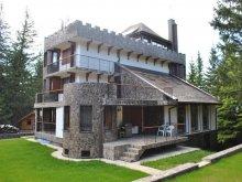 Nyaraló Cotorăști, Kőkastély