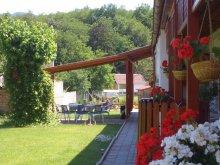 Accommodation Drégelypalánk, Ezüstfenyő Guesthouse