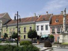 Casă de oaspeți Sopron, Casa de oaspeți Dóra