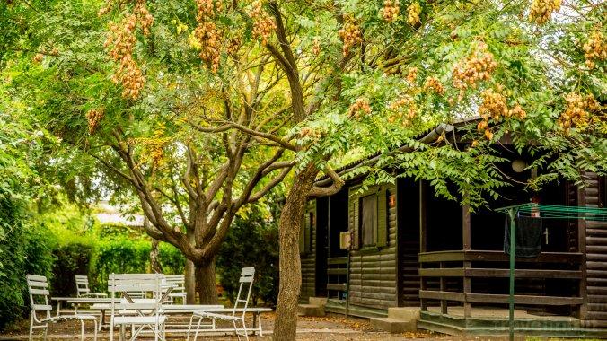 A Kedvenc Balatoni Táborhelyed Camping Zamárdi