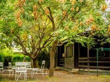 Camping Nagyvázsony, Camping A Kedvenc Balatoni Táborhelyed
