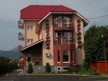 Pensiune Berești-Tazlău, Pensiunea Octogon