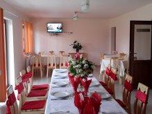 Accommodation Dealu Lămășoi, Denisa & Madalina Guesthouse