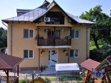 Villa Mănicești, Calix Vila