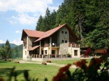 Accommodation Bistrița Bârgăului Fabrici, Denisa Guesthouse