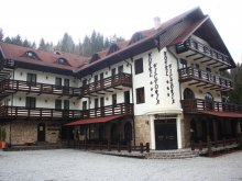 Hotel Budacu de Sus, Hotel Victoria