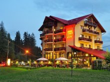 Package Suceava county, Carmen Silvae Guesthouse