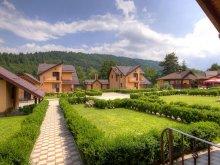 Villa Braşov county, Fortul Doftanei Vila