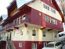 Accommodation Dealu Doștatului, MDM Vila