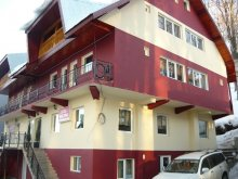 Accommodation Pianu de Sus, MDM Vila