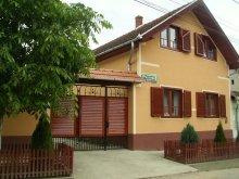 Pensiune Almașu Mic (Sârbi), Pensiunea Boros