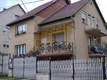 Casă de oaspeți județul Borsod-Abaúj-Zemplén, Casa de oaspeți Lila Akác
