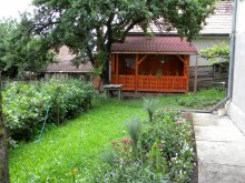 Accommodation Ciceu, Petres Guesthouse