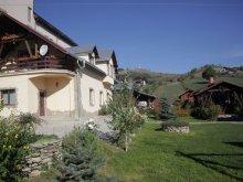 Accommodation Mânăstireni, Anastasia Guesthouse